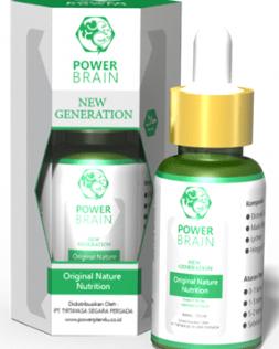 Power Brain Nutrisi otak