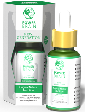 Power Brain Nutrisi otak
