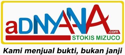 logo adnyana.com baru